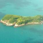 Thưởng thức mực trên biển khi tới Côn Đảo