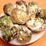 Cách làm món Sò đá hấp sả – đặc sản Hạ Long