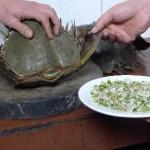 Sam – món ăn được ưa chuộng tại vịnh Hạ Long