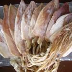 Mực khô Cô Tô hiệu Bá Kiến – thương hiệu uy tín hàng đầu Việt Nam