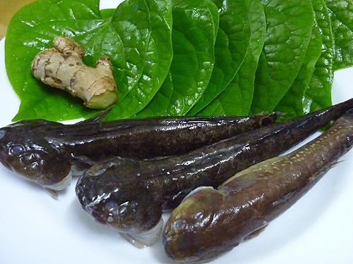 Nguyên liệu cần chuẩn bị cho món canh cá bớp nấu lá lốt