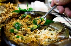 Món ngon từ sam biển Hạ Long