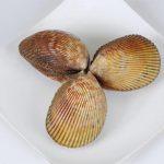 Các món ngon từ sò dương – ốc hương